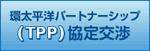 環太平洋パートナーシップ(TPP)協定交渉(外務省サイト)